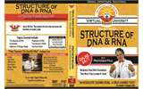 12. Structure of DNA & RNA